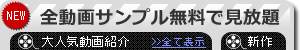 【hey動画】全動画サンプル無料で見放題