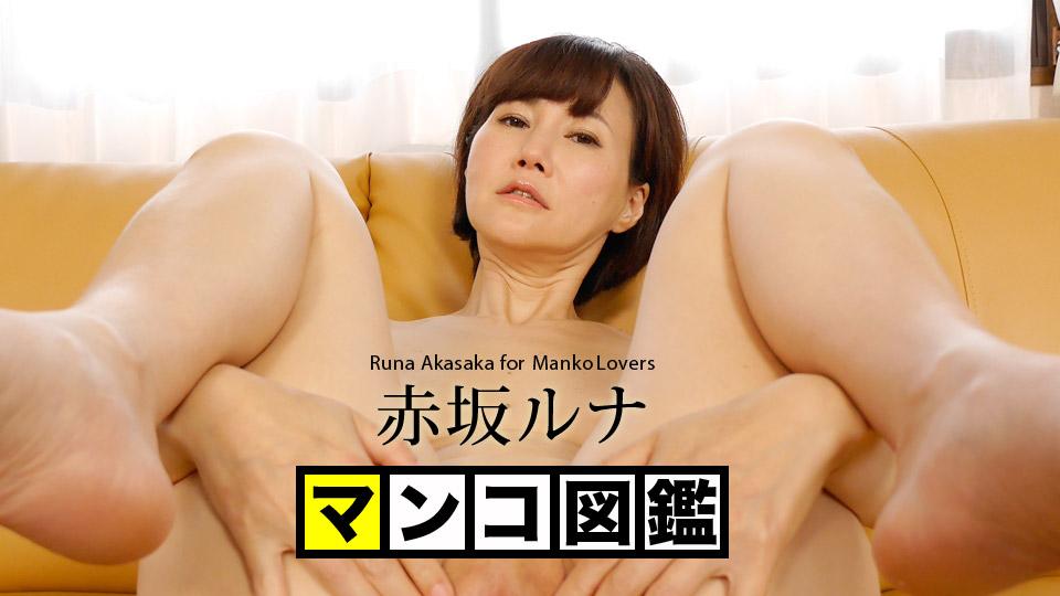 マンコ図鑑 赤坂ルナ 赤坂ルナ