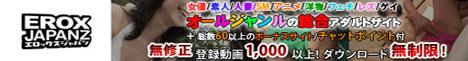 EROX JAPAN Zのバナー画像