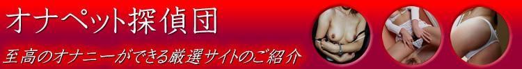 サイト一覧 オナペット探偵団 思考のオナニーが出来る厳選サイトのご紹介