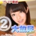 オムニバス:大放尿スペシャル 2014.冬の陣2【Hey動画:ガチん娘】