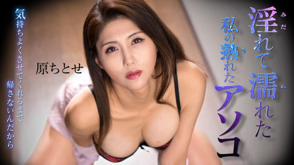 AV女優 カリビアンコム 原ちとせ PPV(単品購入/販売)