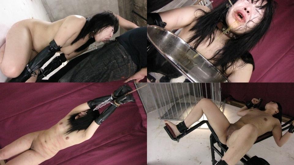 Night24.com:小池 のどか